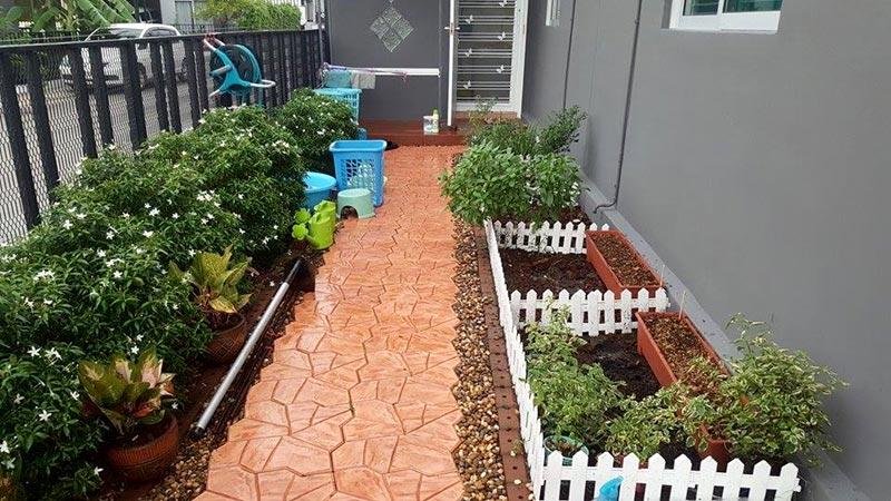 จัดสวนหลังบ้านงบน้อยเองที่บ้าน